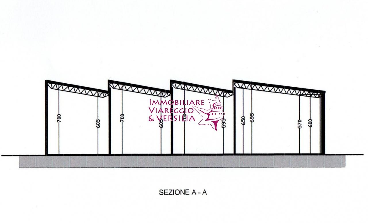 CAPANNONE in AFFITTO a VIAREGGIO - DARSENA